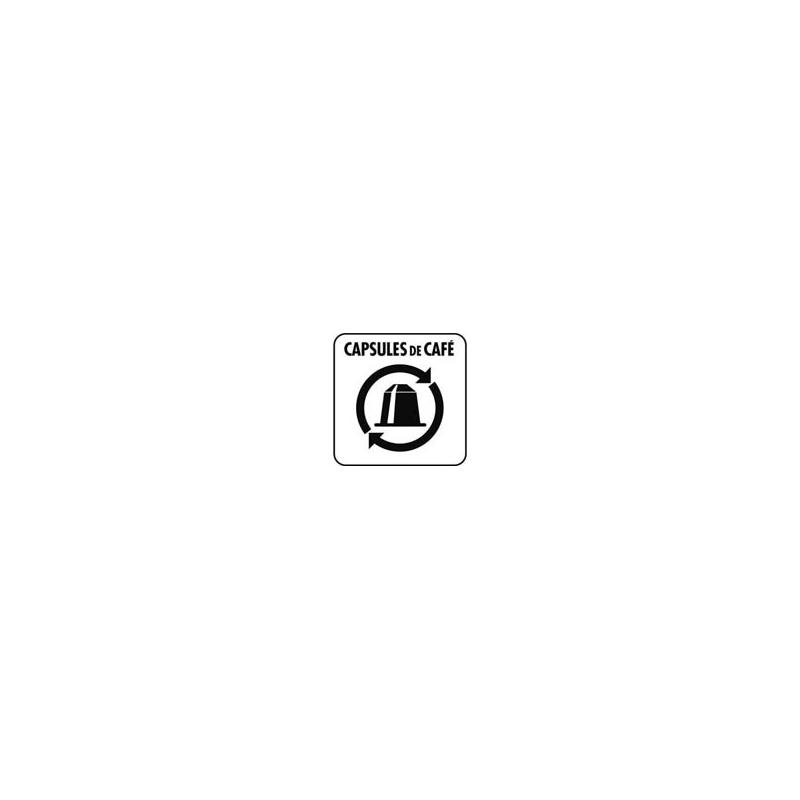 Capsule 10x10